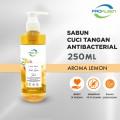 Sabun Cuci Tangan Pump Antibacterial Hand Soap 250mL - United Cleaning Enterprise