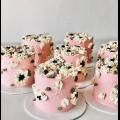 PINKY BLOOM - RARA KITCHY