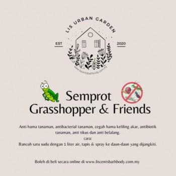 Semprot Grasshopper & Friends by Lis Urban Garden