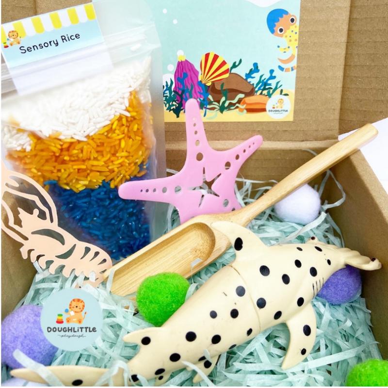 Underwater Ulsa Senses Box