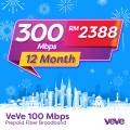 VEVE 300 Mbps Business Fibre (12 Months) - VEVE