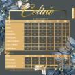 CELINE SUIT - CANDY APPLE - KHAIZAN