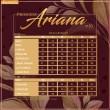PRINCESS ARIANA V10 - DUSTY NAVY - KHAIZAN