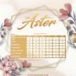 THE ASTER - HICKORY BROWN - KHAIZAN