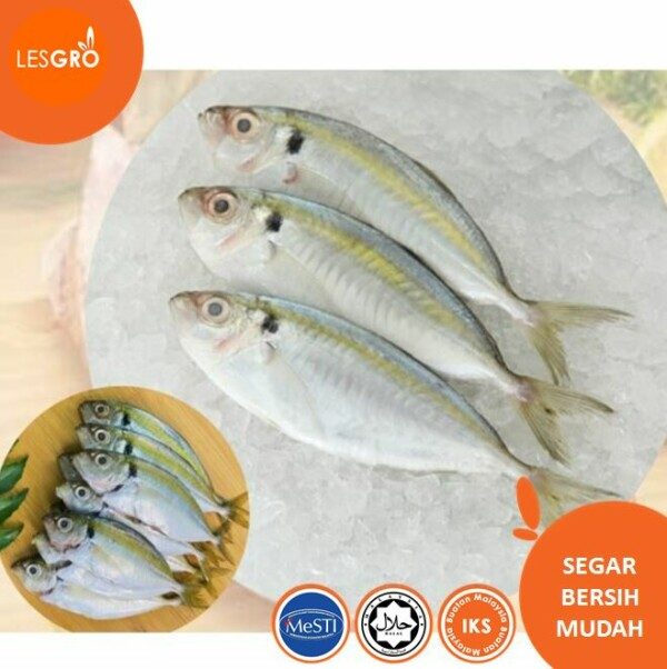 Ikan Selar Kuning -  - Lesgro