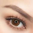 Lofa Lens - Cat Eyes Brown - Young & Glow
