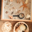 The Beach Sensory Box - Petit World