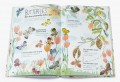 The Big Book of Bugs (Preorder 2 weeks) - Petit World