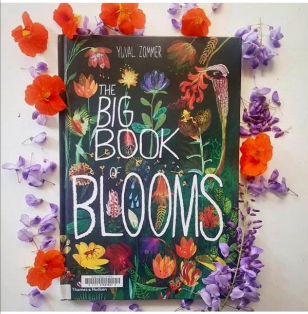 The Big Book Series (Bundle of 5) *Preorder 2 weeks* - Petit World
